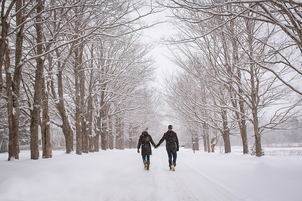 Lovers snowy walk, Kingston, Nova Scotia