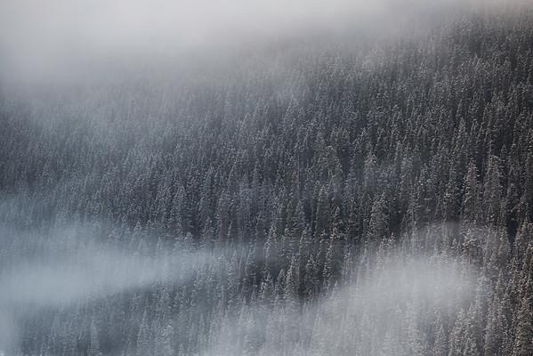 Fog Swirls Over Lake Louise