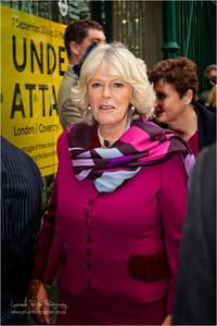 Camilla Princess of Wales