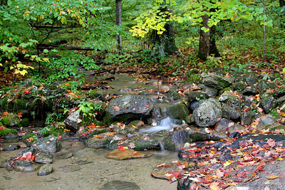 Small waterfall flows into a crystal clear pool.  The wet fallen leaves on the rocks add nice color.