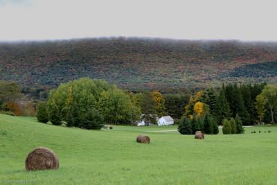 Hay bales waiting for the peak foliage season.
