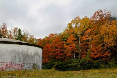 Graffiti-ed water tank competes with vividly colored fall foliage.