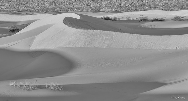 Mesquite Flat sand dunes at sunrise