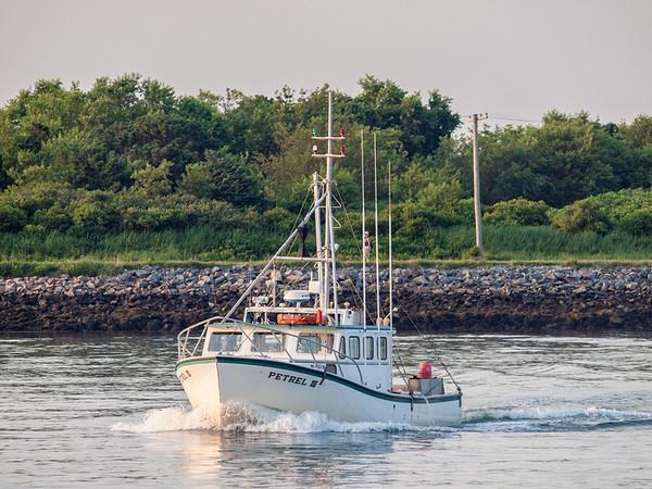 Fishing-boat-Petrel-III-webP7192599