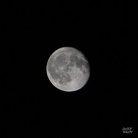 MoonShot From Nauset