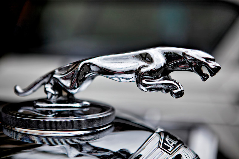 #708 Jaguar Hood Ornament