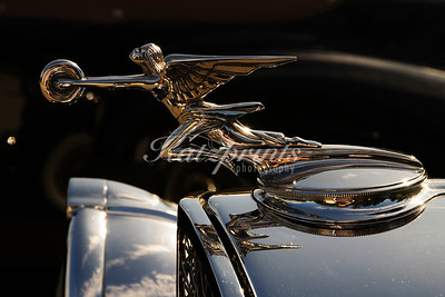 1929 Packard Hood ornament