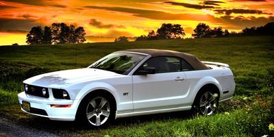 Mustang_VT
