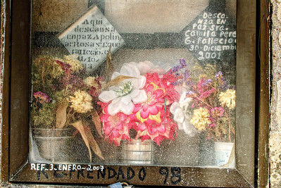San Miguel de Allende Cemetery, Mexico- 2011