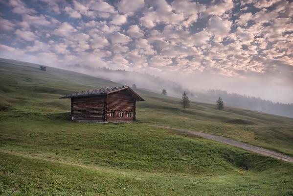 Foggy Morning || Mañana Nebulosa