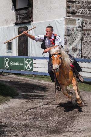 Riding Tradition    Cabalgando la Tradición