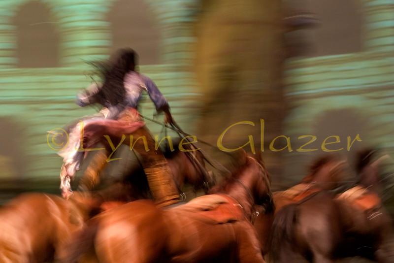 [Karen Turvey and her 4 in hand, all Quarter Horses]