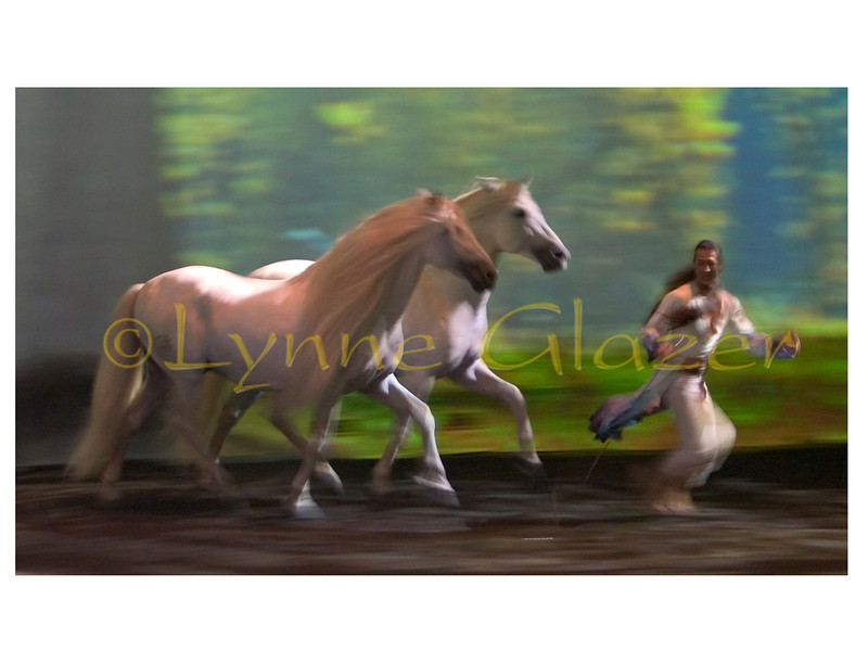 """Be warned. You will wonder the next time you look at a horse…, who is looking back? <br /> <br /> """"What I hope people to take away from this is a dream of horses,"""" muses Latourelle. """"After the show, I want them to dream about horses for a few days, and months later, be struck by a flash of memory from the show."""""""