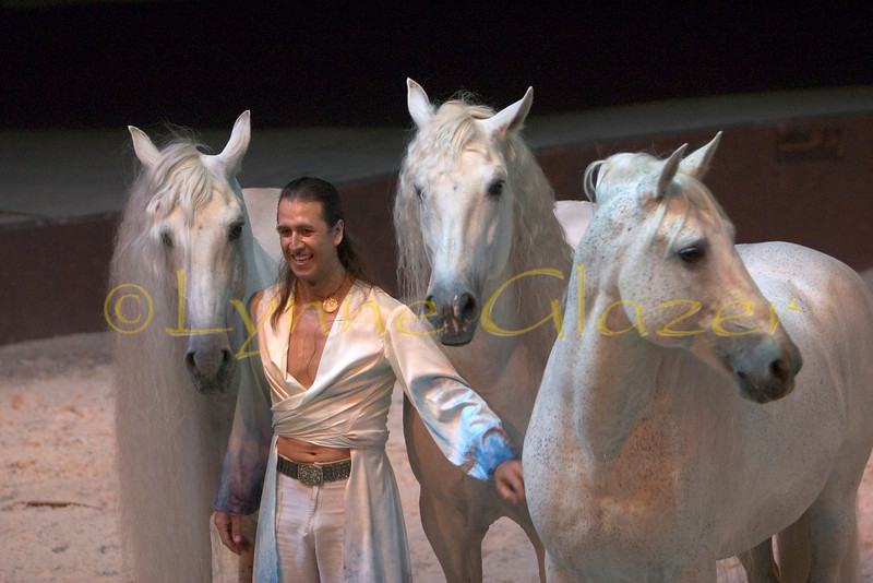 Now 18, Cavalia's equine star Templado was Delgado-bred and sold as a colt, as usual. But the Delgados have a policy; if for any reason an owner is unhappy with the horse, the Delgados wish the horse to be returned. And several years after his purchase, Templado was returned, desperately fearful and suspicious of humans. He was violently rebellious, verging on dangerous, and resisted any attempts to train him or even overtures of friendship.