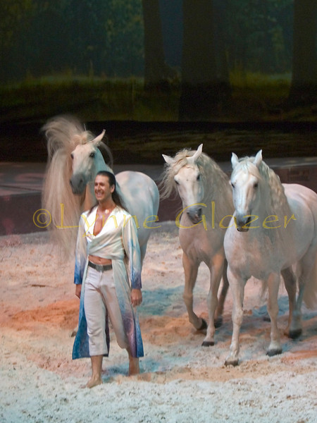 "The famous example of course is the luminous Templado, whose story is told in the photographic book ""Templado: A Star at Liberty"" (available in English for purchase at Cavalia)."