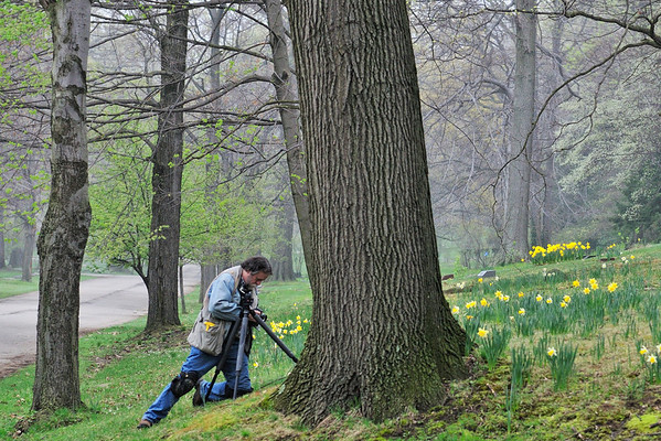 """Mark's thinking...""""If I hide behind this tree, Ron won't see me raise the center post on my tripod!!!"""" - Lake View Cemetery"""