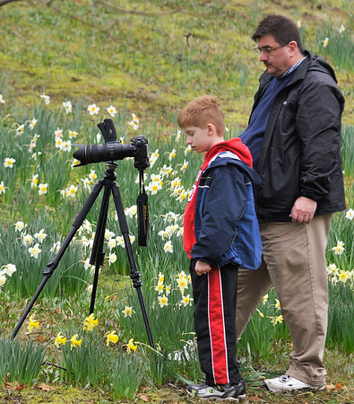"Doug and his son pay their respects to the daffodil Mark Nowak ""accidentally"" stepped on."