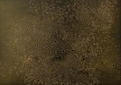 Evaporation #2, 5x7 Lith print