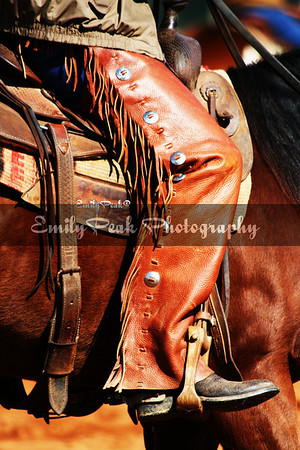 """Shotguns"" B.F.Yeates American Stock Horse Association Clinic"