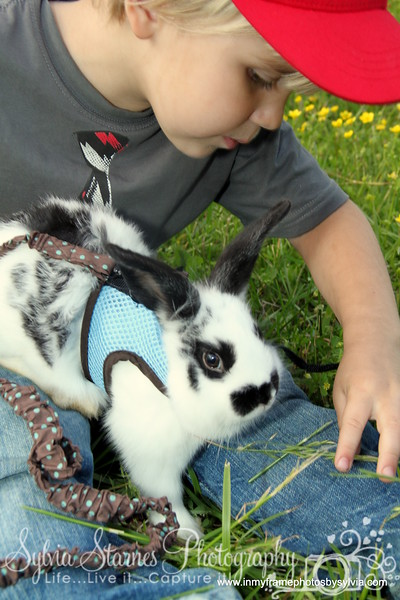 Cam and Flopsy  (8)