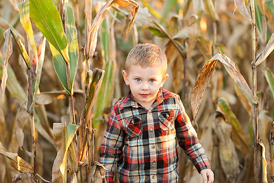 {Brady} Fall Mini Session | Teri Walizer Photography