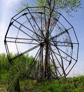 A Tree growing through the Ferris Wheel