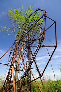 A Tree growing through the Ferris Wheel 3