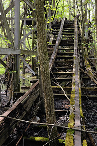 Coaster Tracks - Chippewa Lake Park