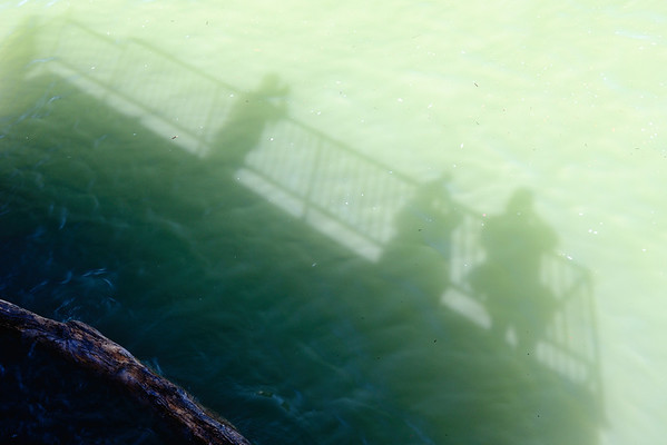 My Shadow and Friends on Fishing Pier - Lorain Ohio