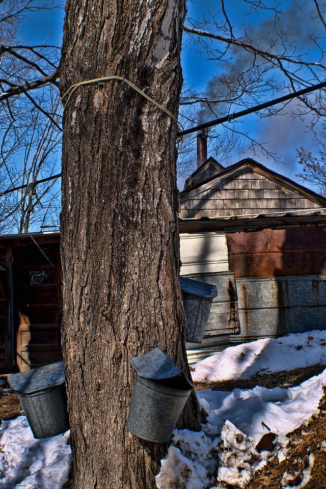 Sap House<br /> Gilford, NH