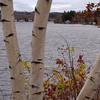 Opechee Birches<br /> Laconia, NH