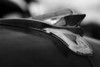 Plymouth Cranbrook, Hood Ornament, <br /> 1951-1953<br /> Found in Manchester, NH