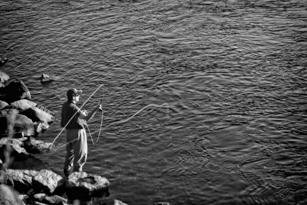 Fly-Fishing on the Merrimack, <br /> Manchester, NH
