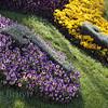 April 2013 Geneva Flower clock 5