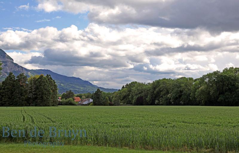 April  2011 Geneva Malagnou neighbourghood 2