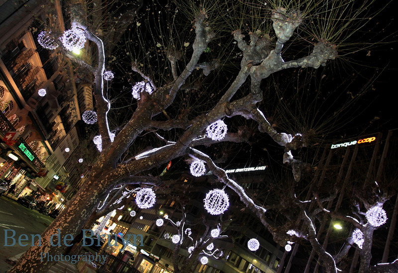 Dec 2010 Christmas lights 9