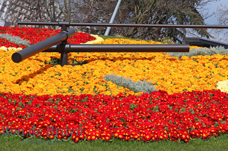 March 2011 Flower clock 2