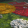 April 2010 Geneva flower clock 1