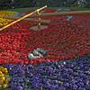 April 2010 Geneva flower clock 3