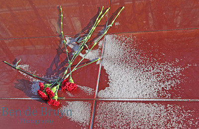 Red carnations and snow at tomb of the Unknown Soldier Moscow Russia