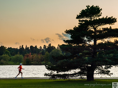 Runner at Rideau