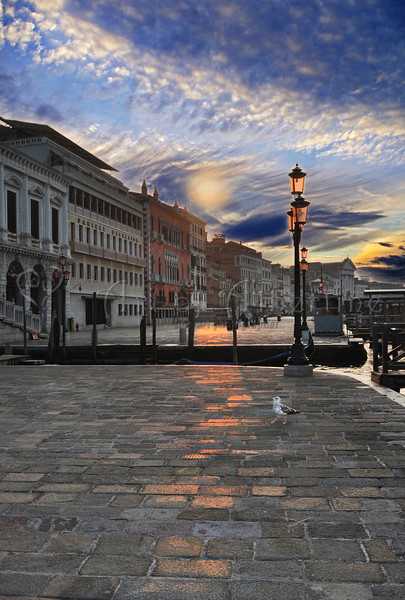 Venice Rising