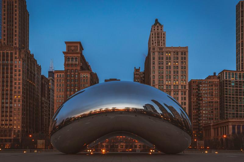 The Bean | Illinois