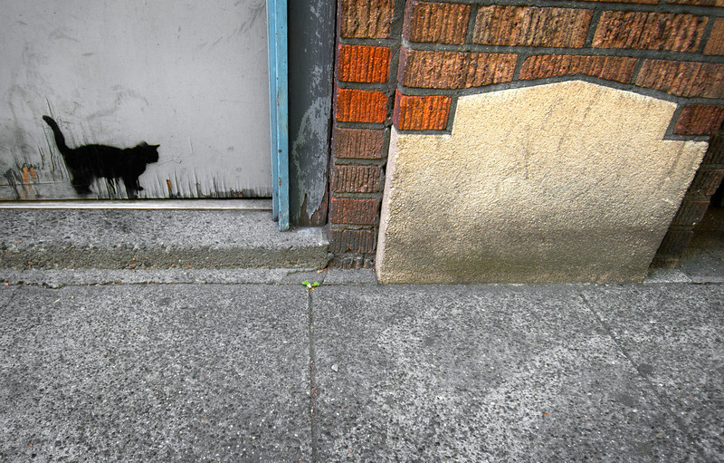 Belltown, Seattle - Washington<br /> <br /> In years past, Belltown was an industrial area of Seattle's waterfront district. But in recent years the low-rent areas and manufacturing have been replaced by art galleries, high-rise apartments, trendy eateries, and upscale shops. Here, the painted shadow of a cat lingers at the door.
