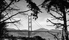 """San Francisco - Golden Gate Bridge <BR><BR>Want to buy a print of this image?  Click <a href=""""http://www.langfordphotography.com/For-Sale/Cityscapes/295655_R5p5KF"""">Here</a>!"""