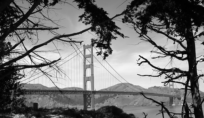 "San Francisco - Golden Gate Bridge <BR><BR>Want to buy a print of this image?  Click <a href=""http://www.langfordphotography.com/For-Sale/Cityscapes/295655_R5p5KF"">Here</a>!"