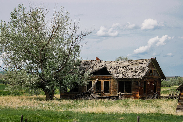 Tales of Homestead Past