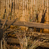 20141119_033a_Deer-Expo-Pittsfield-IL-AOG_pr1