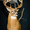 20141119_018a_Deer-Expo-Pittsfield-IL-AOG_pr1