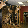 20141119_009a_Deer-Expo-Pittsfield-IL-AOG_pr1